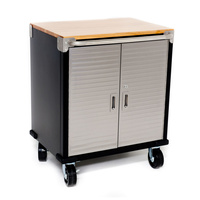 MAXIM HD 2 Door Timber Top Roll Cabinet PI202C