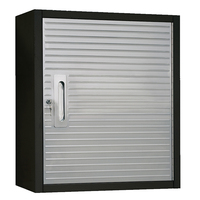 MAXIM HD 1 Door Hanging Wall Cabinet PI209B